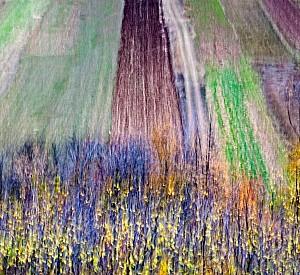 Fields in autumn, S. Stefano di Sessanio
